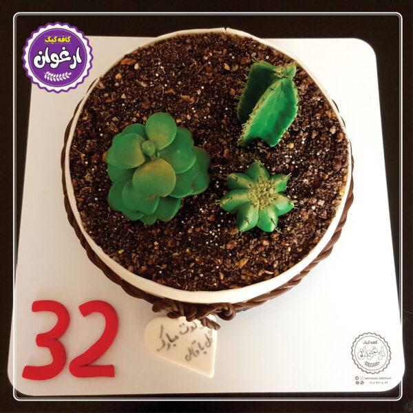 کیک گلدان کاکتوس
